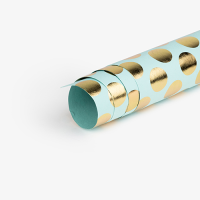 Spot Wrapping Paper - Aqua / Gold