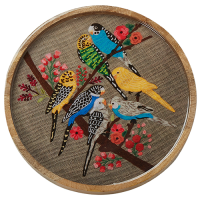Budgerigar Round Tray - Multicolour
